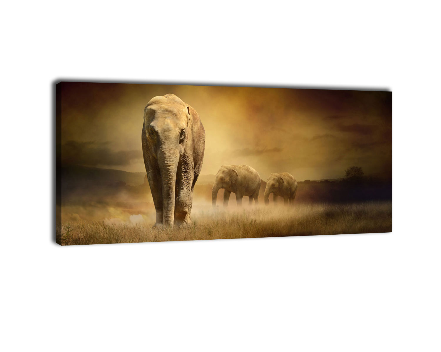 leinwandbild steppenelefant afrika bild auf leinwand kunstdruck ebay. Black Bedroom Furniture Sets. Home Design Ideas